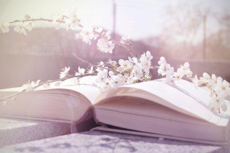 beautiful-book-cream-flower-flowers-Favim.com-217902